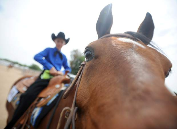 Grant Weaber, 10, watches as his horse Wrangler leans in to investigate the camera during the Weld County Fair's Western Horsemanship event on Tuesday at the Island Grove Arena in Greeley. Weaber was in the pre-junoir division and was among the many competitors in the event. Tuesday's events also included the Bred & Fed Meat Goat Show and the 4-H timed horse events. Today will feature the 4-H Ranch Horse Show at 7 a.m. and the Market and Breeding Meat Goat Show starting at 9 a.m.