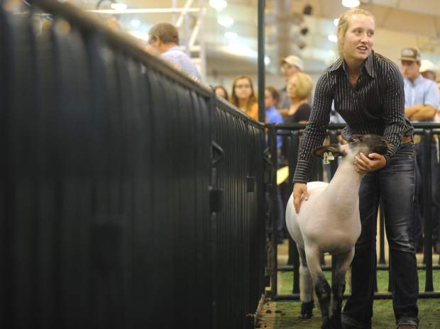 Jenna Frink looks over to her friends and fellow competitors before showing her sheep Thursday morning at the Weld County Fair at Island Grove Events Center in Greeley. Frink went on to be named the Overall Champion in Market Sheep.
