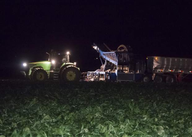 Chris Schnorr is racing the full onset of winter as he pushes to get his sugar beet harvest completed before the first hard freeze. There are no easy days during harvest time, and this day began at 2 a.m.