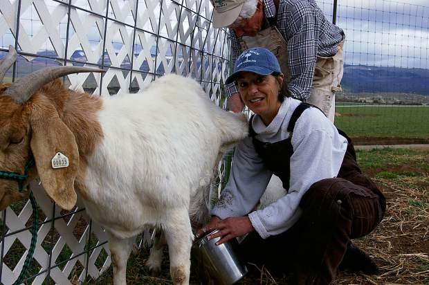 Colorado Woman Finds Niche With Boer Goat Breed