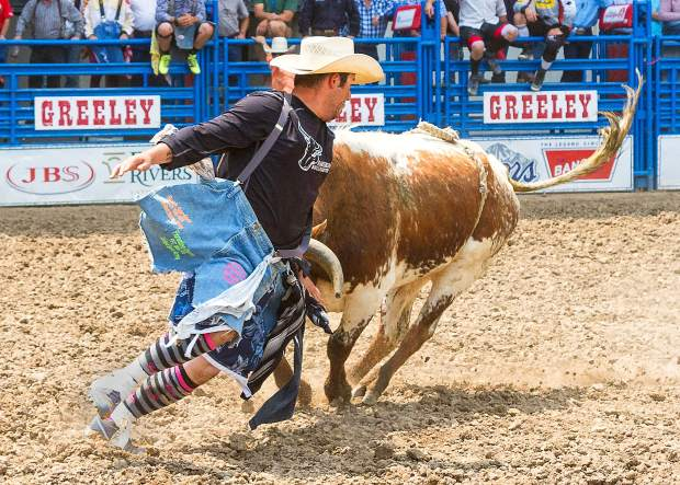 Promoters Leading A Revival Of Freestyle Bull Fighting