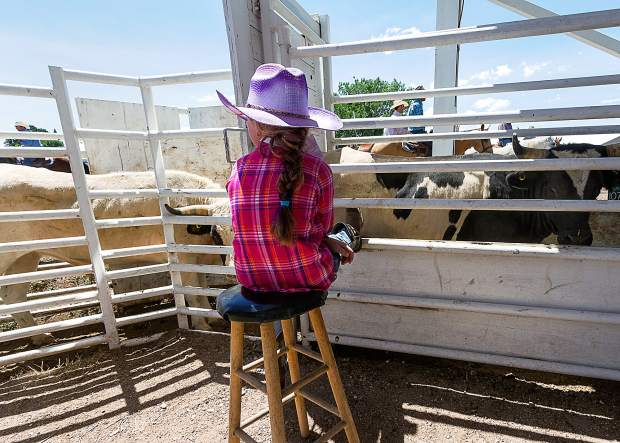 When you are seven and a new Toe, a lot of your time is spent sitting and pulling the occasional gate. However, this is very important step to insure that Cheyenne Frontier Days always has dedicated volunteers.