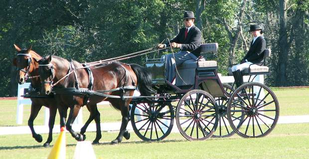 Rocky Mountain Carriage Club continues old-fashioned horse and buggy  traditions