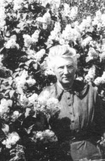 Hattie Tillotson spent many of her years among her lilacs and assorted fruit trees in the family orchard.
