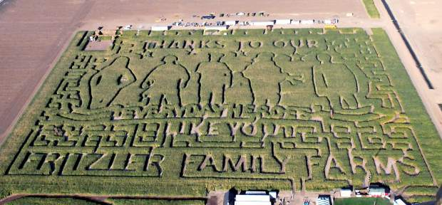 The completed design of Fritzler's Corn Maze seen from above on Wednesday outside of LaSalle. This year's design is dedicated to heroes.