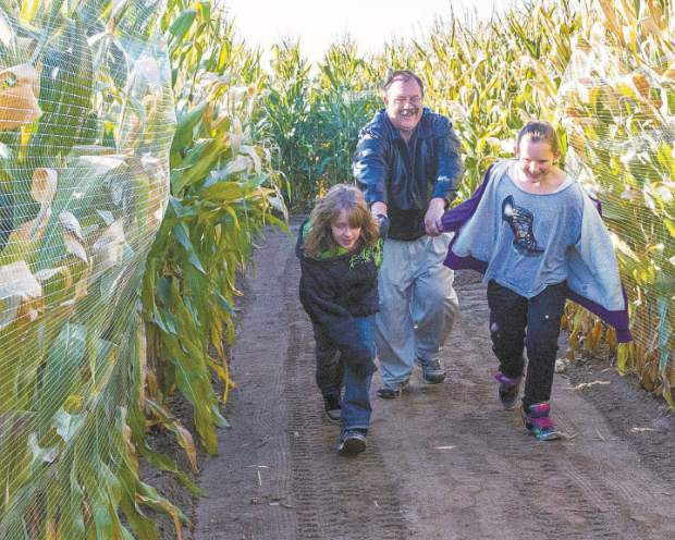 Jack Minor of Greeley is reluctantly dragged deeper into the Fritzler Corn Maize by his eager daughters, Jamie (L) and Sara. The Corn Maize opens September 20th and runs through November 1st.