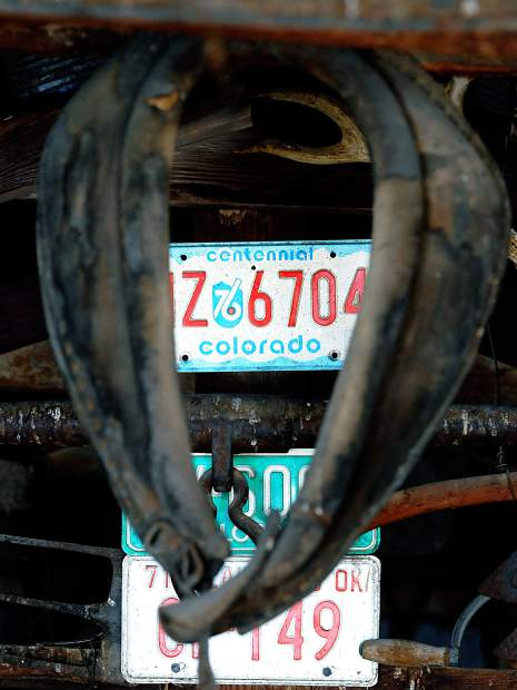 A centennial license plate is framed inside an old horse harness while inside one of the old buildings at the Goetzel Farm just east of Windsor.