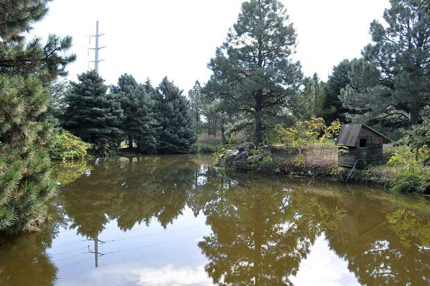 Trees overlook a pond at Houston Gardens in Greeley. The area was taken over by the West Greeley Conservation District in January and is undergoing renovations to revamp its look.