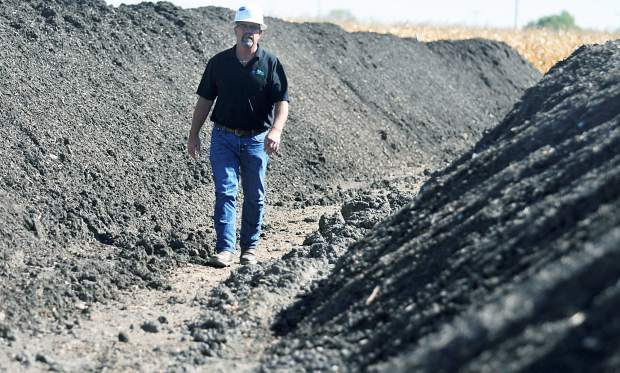Bruce Sandau, with Green Earth Environmental, walks among the rows of HydroLoc, a patent-pending proprietary blend that uses well drill cuttings in a mixture to improve the soil and aide well site reclamation, at a Noble Energy drilling site near Milliken.