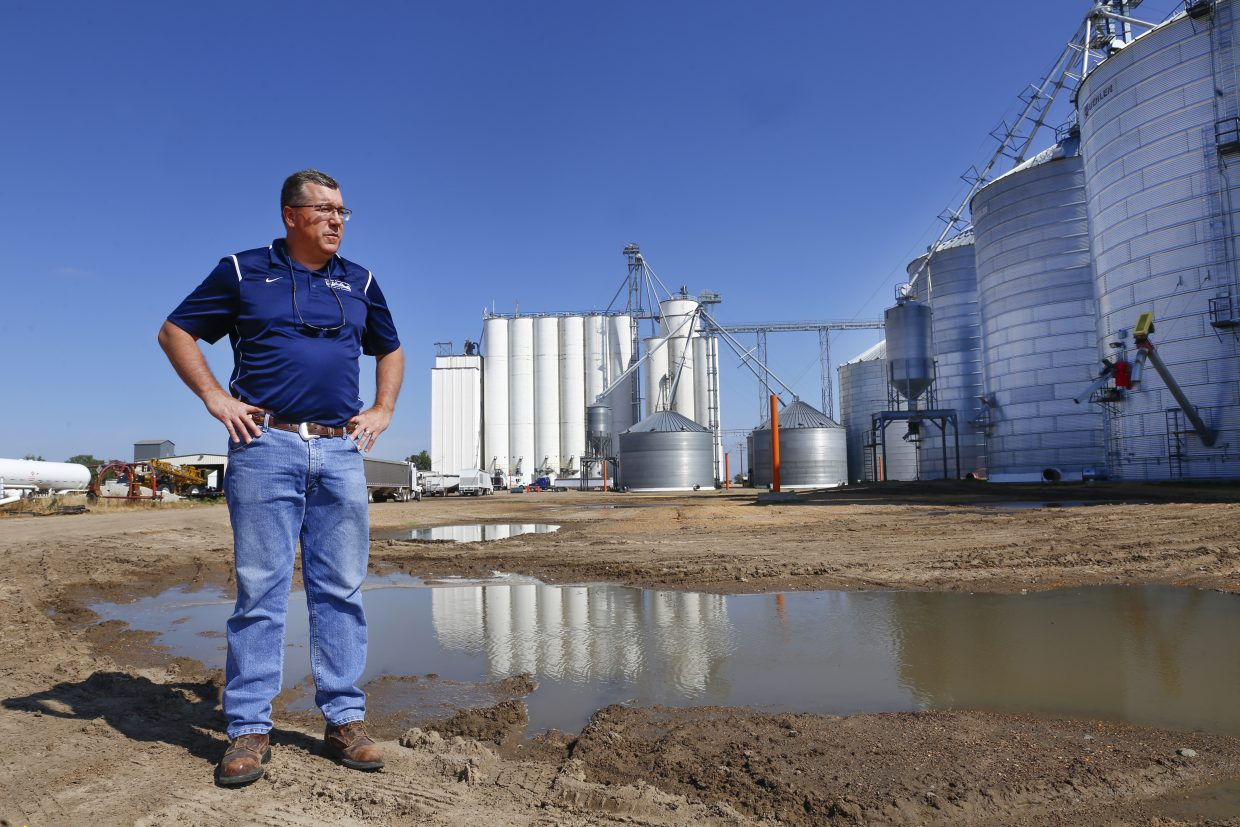 Keith DeVoe, general manager of the Roggen Farmers Elevator, stands in front of the cement silos at the Roggen Farmers Elevator in Roggen. Farmers across the state are battling low commodity prices and the difficult choices on their operations.