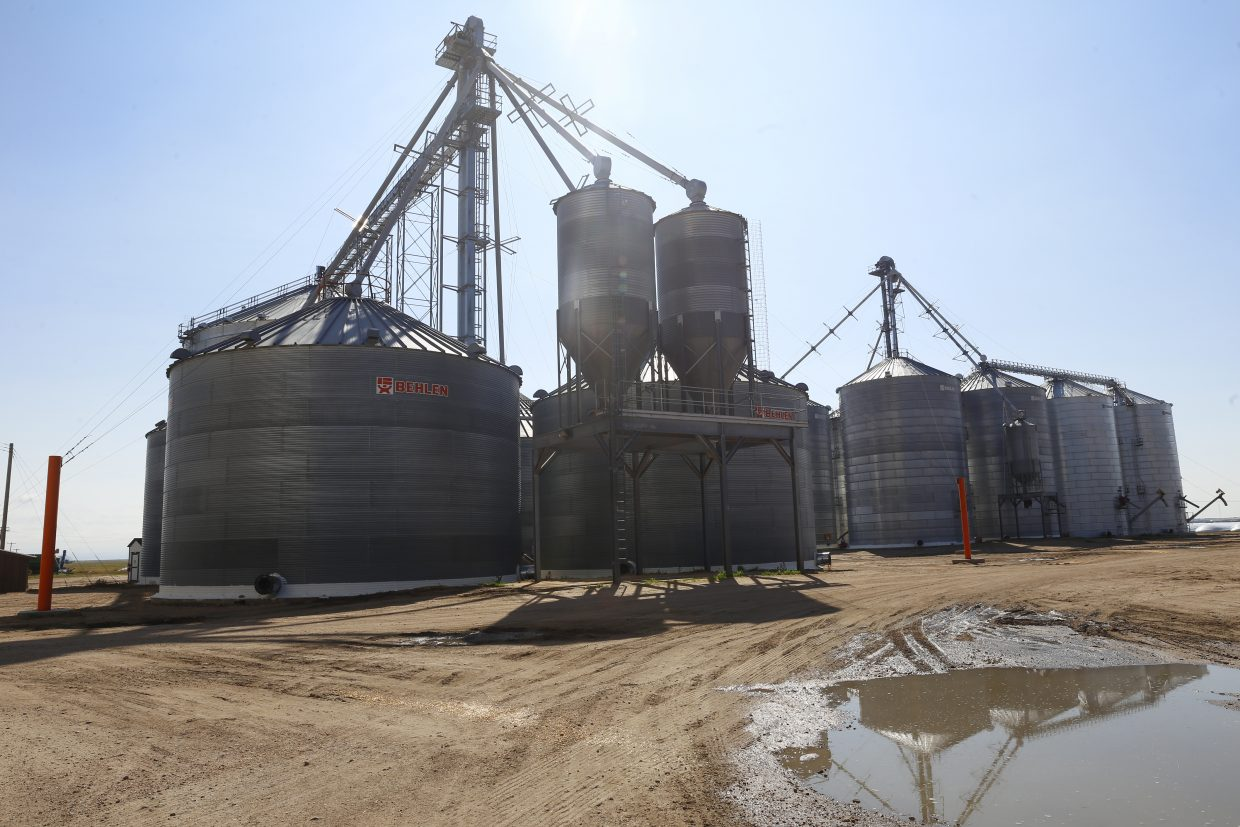 The Roggen Farmers Elevator stores grains for area farmers. Commodity prices are low across the board with both wheat and corn, selling for less than three dollars per bushel.