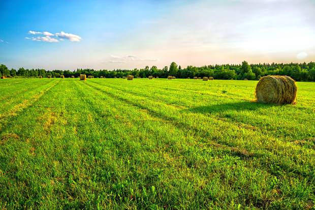 Nebraska Ag Leaders High Land Values Again Show Need For Property Tax Reform Thefencepost Com