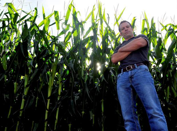Darren Hankins stands along side the tall corn stalks on Tuesday at his field near Johnstown. Hankins plans to have a corn maze in operation this fall.