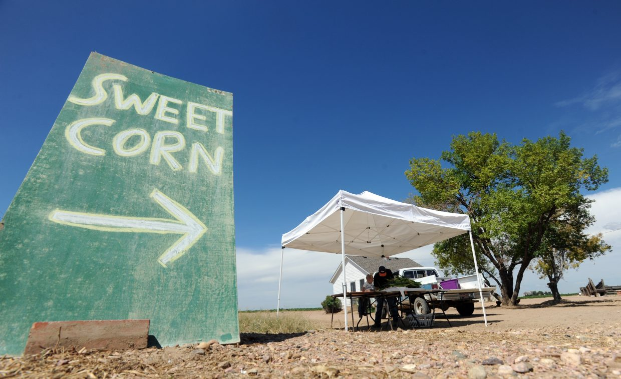 A sign advertising the sweet corn stand sits along Weld County Road 74 on Monday west of Eaton.