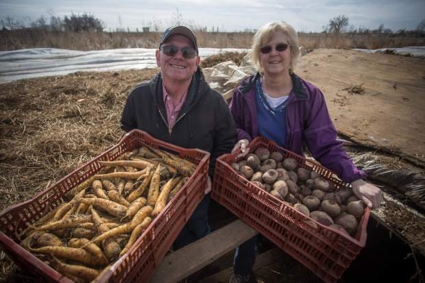Jerry Monroe and his wife, Jacquie, pose with some carrots and potatoes that were grown at Monroe Organic Farms on Monday in Kersey.