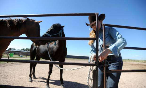 Horses misbehave when Kelsie Winslow turns her back to close the gate on Monday at a horse boarding facility outside Pierce.