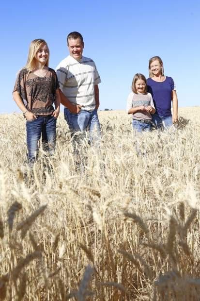 From left to right: Macey, Justin, Sydnee and Amanda Lauridson stand in the family's wheat field in Brighton, Colo.