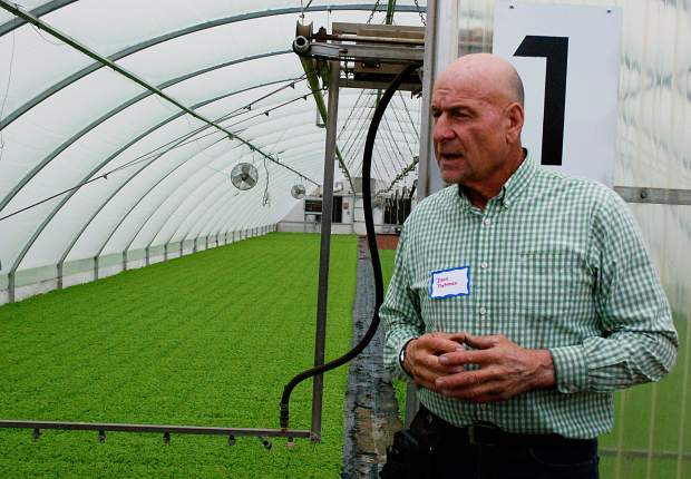 Dave Petrocco, owner of Petrocco Farms, explains the benefits of starting romaine lettuce plants in a greenhouse during an ag tour following the roundtable on ag issues Wednesday. Petrocco said the no. 1 issue facing his operation, which has farms stretching from brighton to norht of Greeley, is labor shortages and policy.