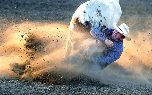 Wyatt Smith of Rexburg, ID. slides in the dirt as he pulls down a steer for a time of 4.3 seconds during the steer wrestling competition at the Greeley Stampede Arena last year.