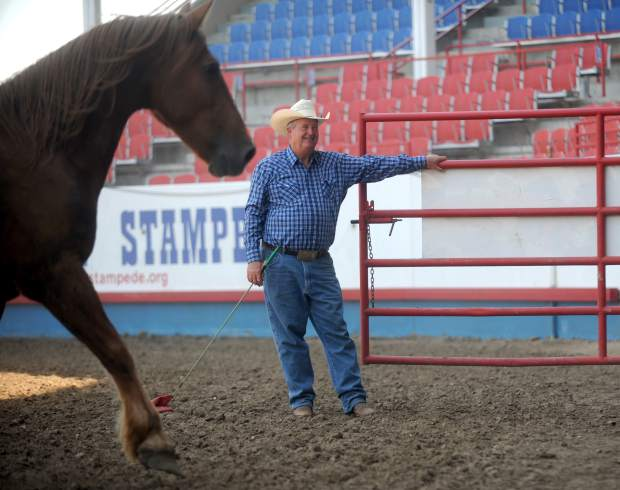 A horse trots past Bennie Beutler as he opens the gate on Tuesday at the Greeley Stampede Arena. Beutler lets the animals loose in the arena before each rodeo to help keep them in shape and to let them learn their surroundings.