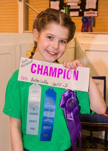 Nine-year-old Audrey Laffey took home the champions ribbon for her home environment project at the 2013 Larimer County Fair.