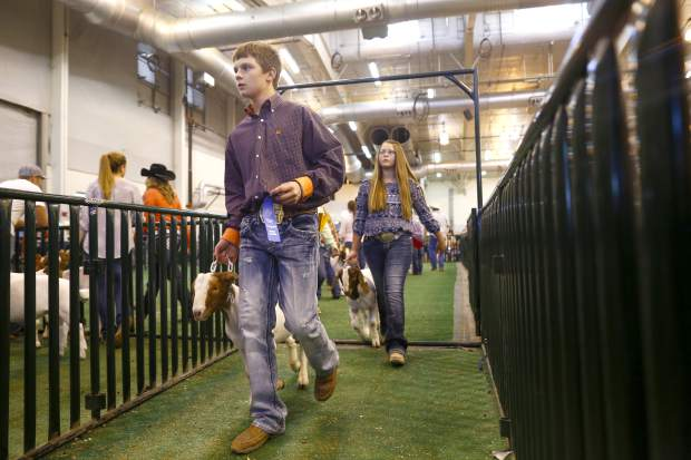 Blake Fabrizius, 14, and Jacey Bernhardt, 12, walk out of the show arena Wednesday after taking first- and second-place in their medium-weight class.