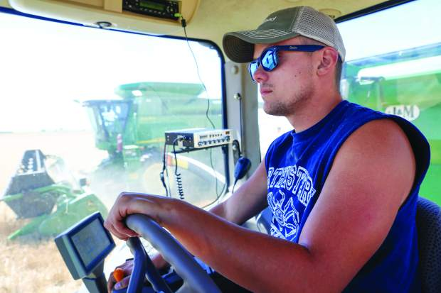 Brett Arnusch, 20, has been helping his family harvest annually for five years. It will take the team about a week to harvest all of the fields of Arnusch Farms.