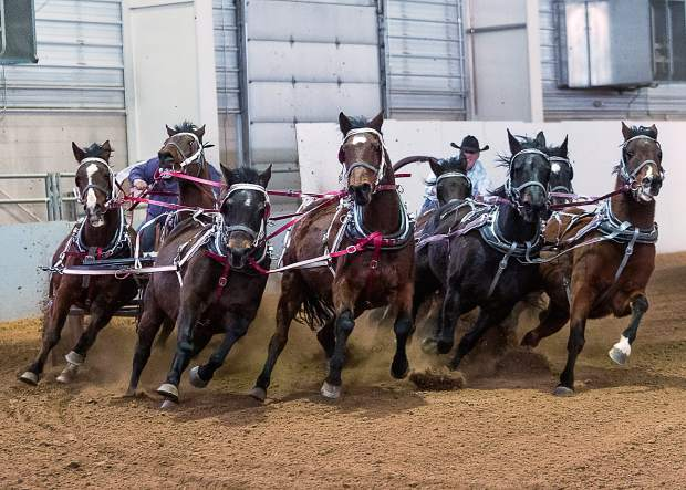 During the brief intermissions at the 12th annual Big Thunder Draft Horse Show held at The Ranch in Loveland, Colorado, fans were treated to the extreme action and intensity of Chuckwagon Races.