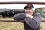 Debbie Veltri is a fixture at the Greeley Sales Barn, 711 O St. She has been a brand inspector for 40 years, but she will retire from the job later this year. As a brand inspector, she checks for proof of ownership to make sure whoever is selling the livestock holds the title on the animal. Photo by Alyson McClaran