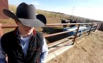 Tipping his hat to block the sun, Winsten McGraw, 16, stands along side the steer pen at his home outside Gill. In addition to calf roping Winsten also competes in steer wrestling and  team roping.