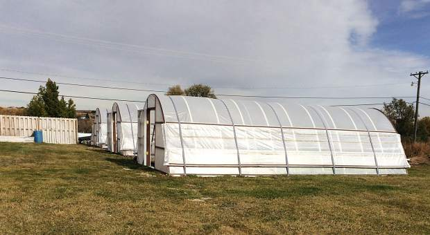 The high tunnels, initially funded by a government program, provides additional food for the school to use in their lunches and offsets the deficit of not receiving funding. Photo courtesy of Peyton Kottwitz