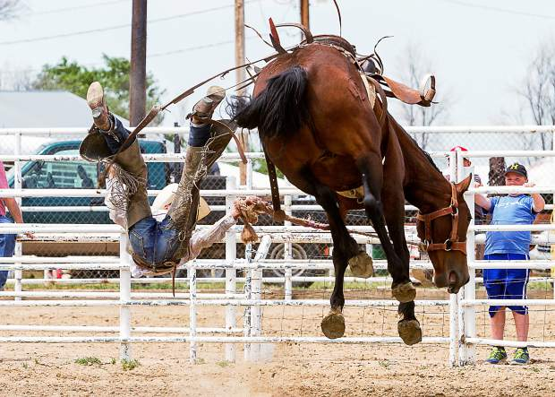 Gatlenn Huddleston looked good early in his ride, but the Kirsten Vold bronc, Rising Sun, had other ideas and sent the Kansas cowboy flying before the eight second buzzer. Huddleston landed hard on his back but walked out of the arena on his own.