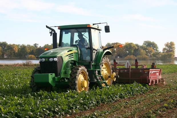 A defoliator is run near Mead, Colo., during sugar beet harvest
