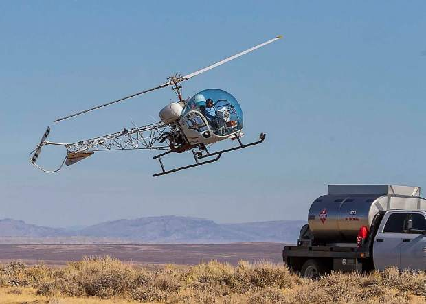 The North Lander range covers 375,000 acres and contains an estimated 800 wild horses. The helicopters spend a lot of time in the air searching for horses and gently herding them to the trap. They land frequently to refuel.