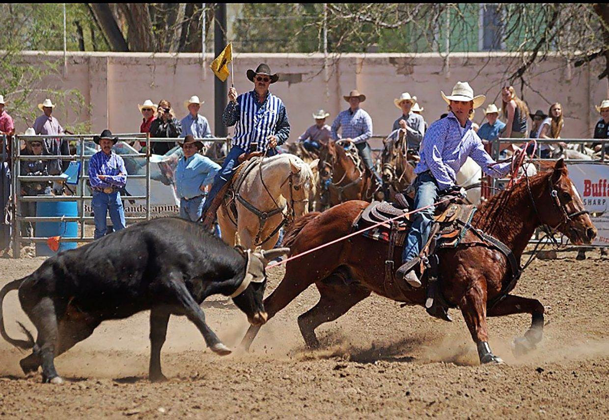 Colorado S Huwa Earns Full Ride Rodeo Scholarship To South