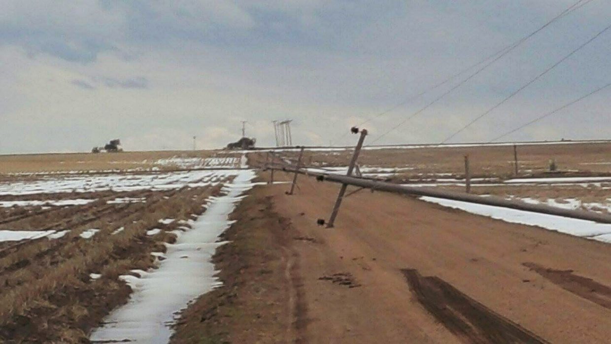 The winds and blowing snow caused extensive damage to young wheat stands as well as telephone poles and some buildings.