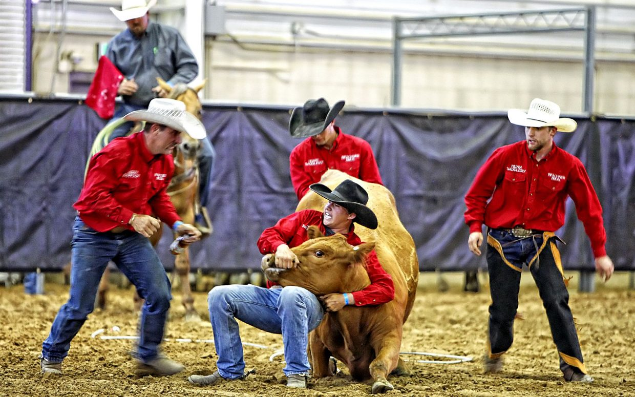 The Wild Cow Milking event is always full of action at the Working Cowboys Ranch Rodeos. The Beachner Brothers Livestock team from Kansas scrambled to get their mama cow under control, so they could get some milk in a bottle and take the unnofficial lead in the crowd-pleasing event.