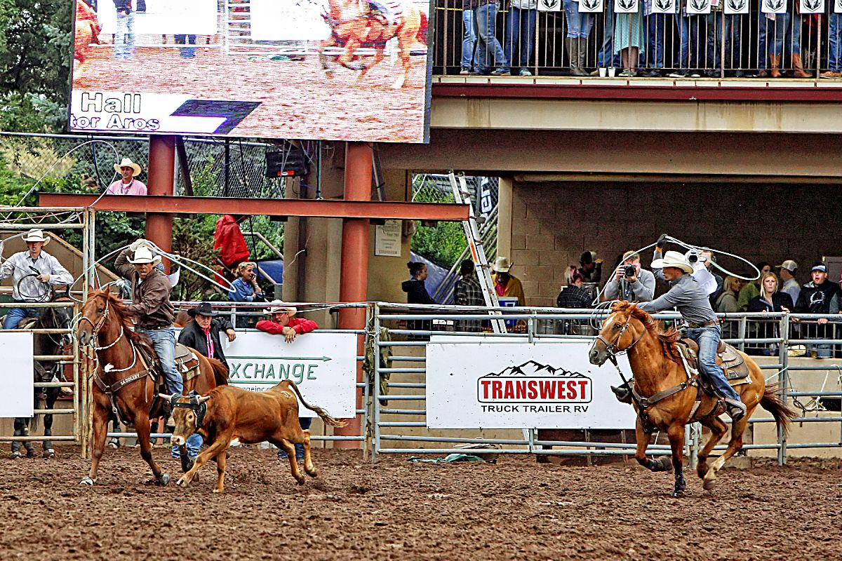 Team ropers Seth Hall and Victor Aros nailed down a 5.6-second time on July 13, which tied for the second-fastest time of the entire rodeo, in order to advance to the championship round at the 2017 Pikes Peak or Bust Rodeo in Colorado Springs. The duo finished the rodeo in sixth place overall.