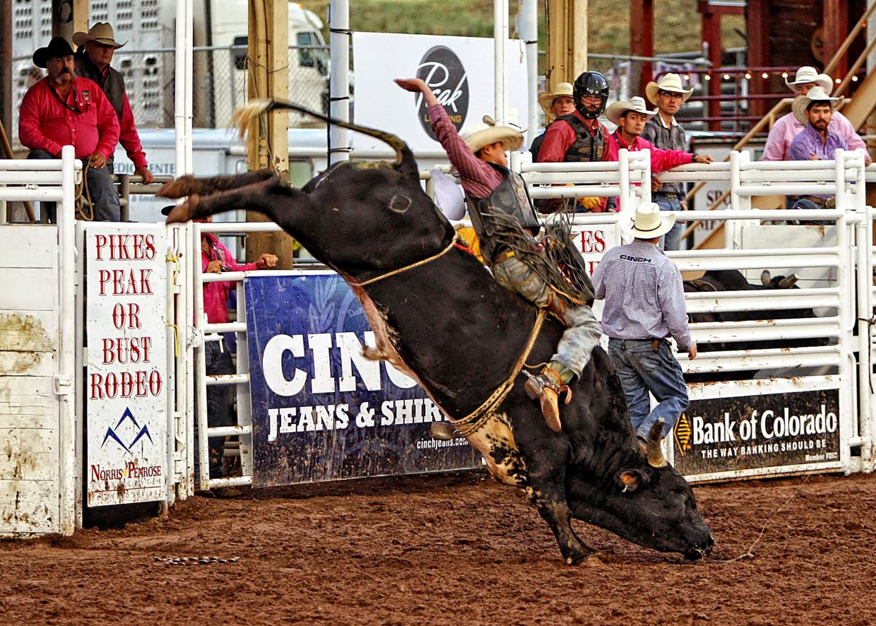 Arizona bull rider Tustin Daye moved ahead to the next round with this 80-point ride aboard Trouble In Paradise. Daye eventually ended up taking second place overall in the 2017 Pikes Peak or Bust Rodeo, earning $7,750 for his efforts.