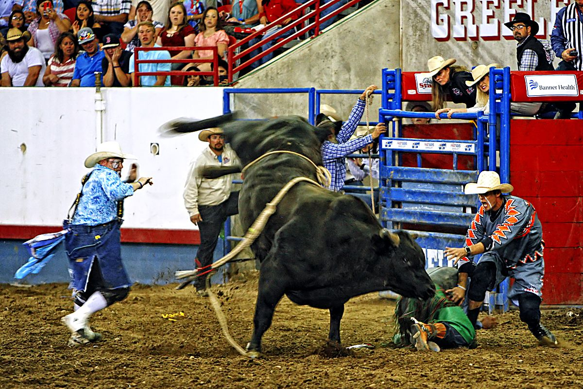 The Beulter and Son Rodeo Company bulls got the best of all the cowboys during the championship round of the 2017 Greeley Stampede, which brought out the best in the cowboy protection team of Wacey Munsell and Brandon Loden. Munsell and Loden got many a bull rider out of a sticky situation like this one.