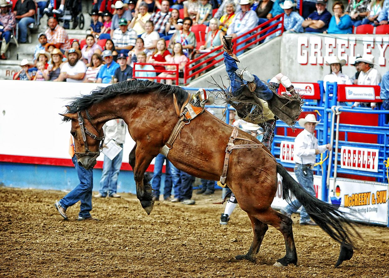 Beutler and Son Rodeo Company has a reputation for bringing big, strong bucking horses to a rodeo, which a number of cowboys found out the hard way during the championship round of the 2017 Greeley Stampede.