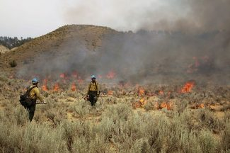 Montana ranchers continue to rebuild after devastating Lodgepole Complex fire
