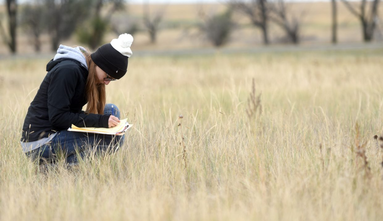 Emma Stump, 16, a sophomore at Prairie School in New Raymer, Colo., crouches in the pasture during the range judging contest at Prairie School, about an hour northeast of Greeley, Colo..
