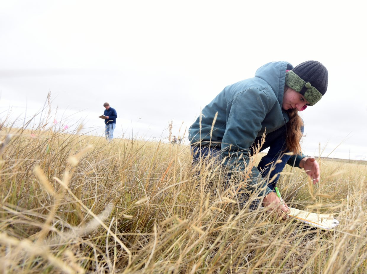 Hannah Kinnison, 15, kneels down in a pasture near Prairie School outside of New Raymer, Colo. Kinnison was one of 64 students competing in the range judging event.
