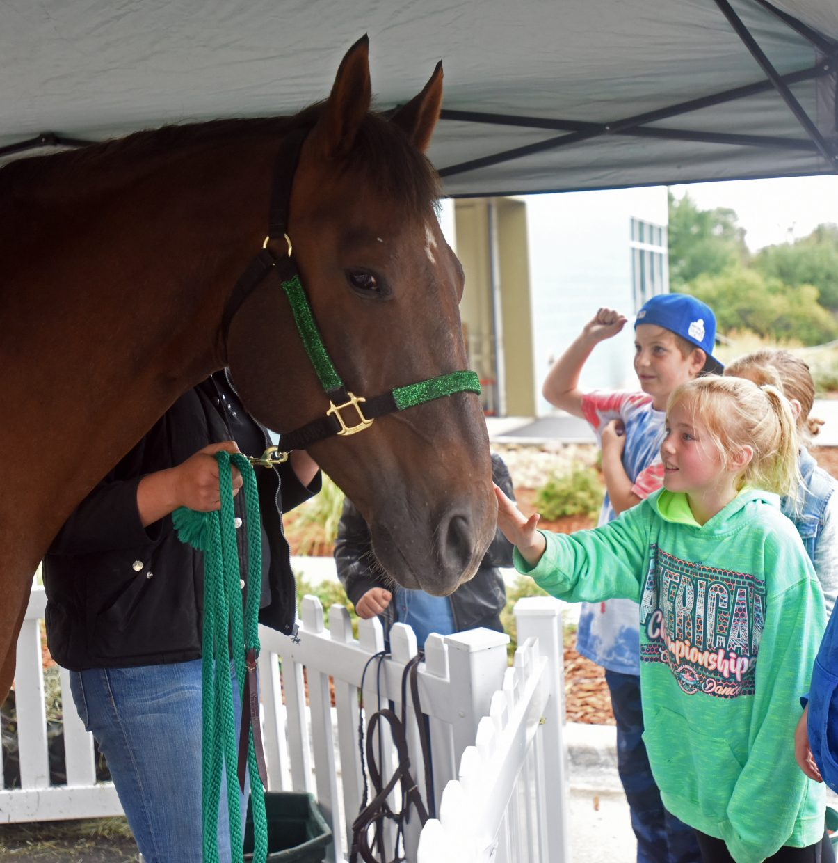 Ady Roles, 9, pets the horse at the agriculture education fair on Sept. 25 at the Windsor Recreation Center in Windsor, Colo.