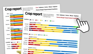 Oct. 30 Crop Progress Report