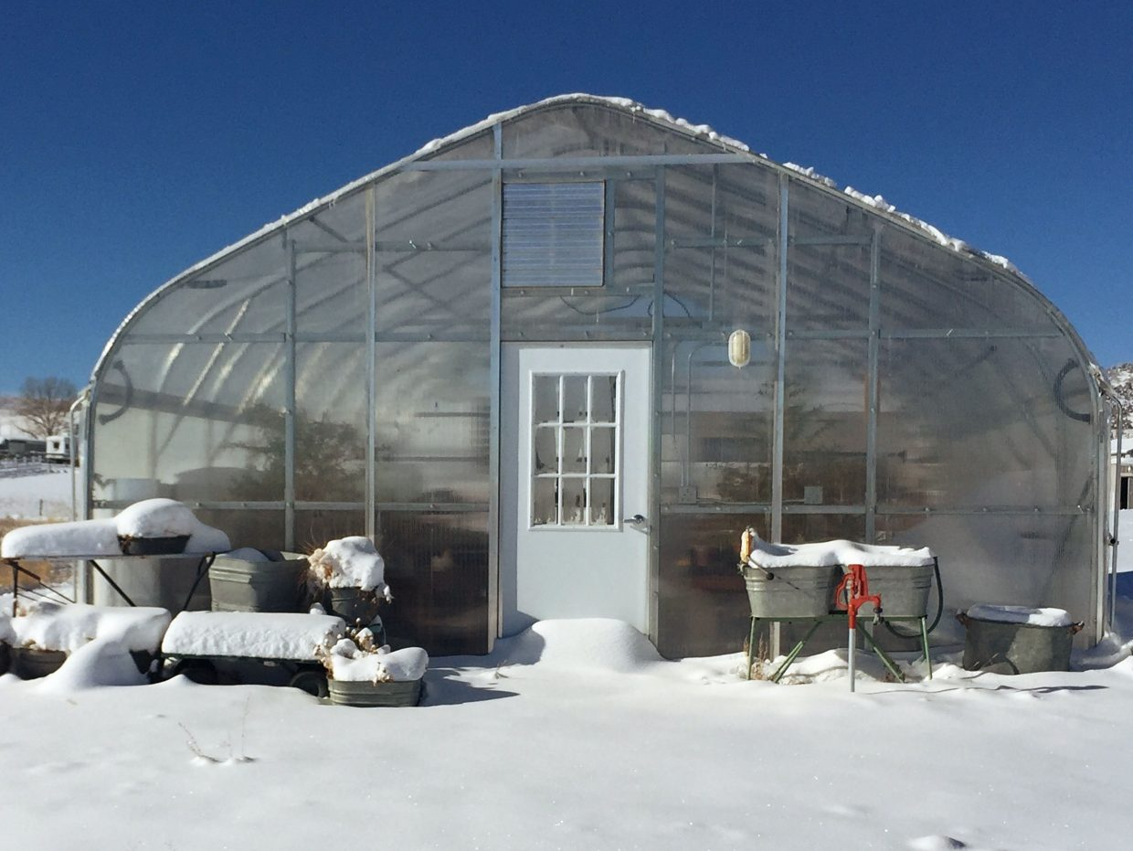 """The Perry's greenhouse, which they built in 2015, allows Trudy Perry to blissfully """"play in the dirt"""" year-round. Photo compliments of Heritage Lavender"""