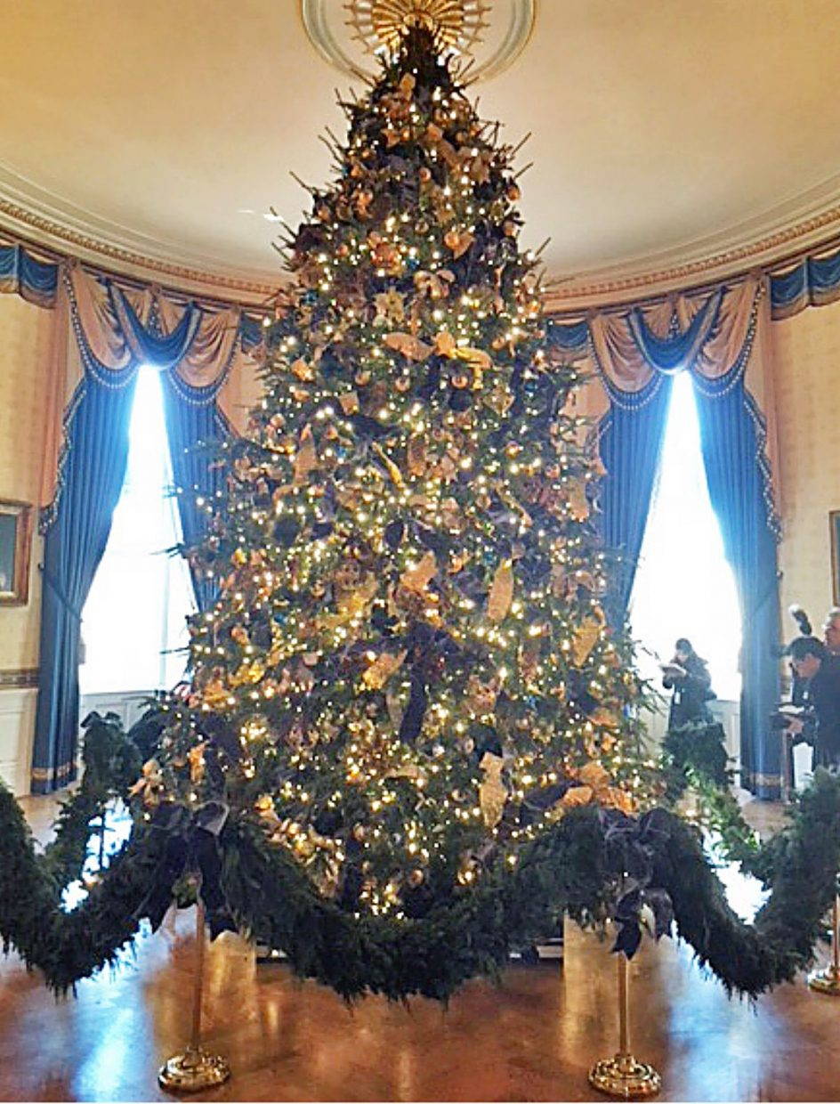 The Blue Room includes the 18.6-foot official White House Christmas tree, a balsam fir from a farm in Endeavor, Wisc.