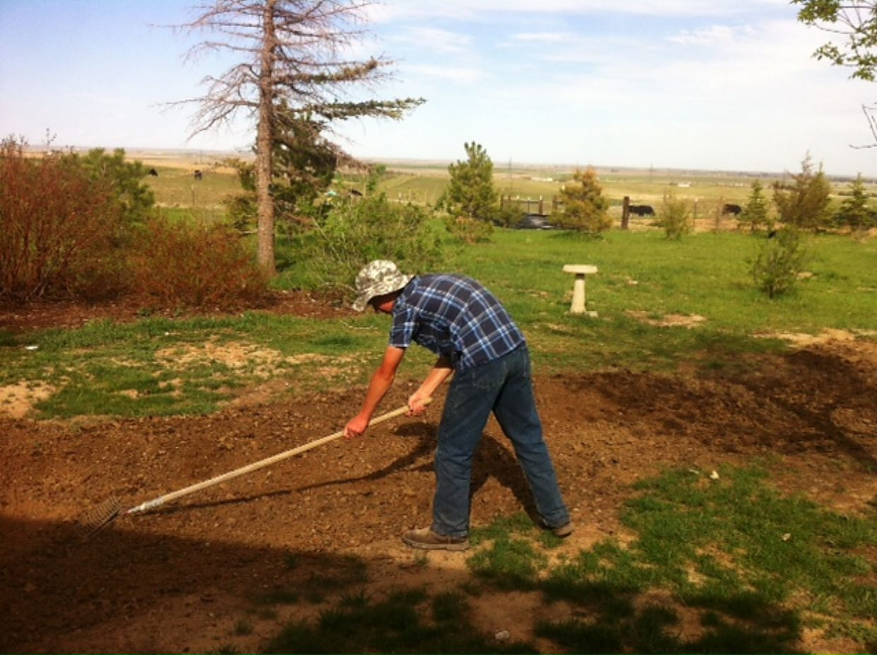 Teen learns how to farm while lending a helping hand   TheFencePost.com