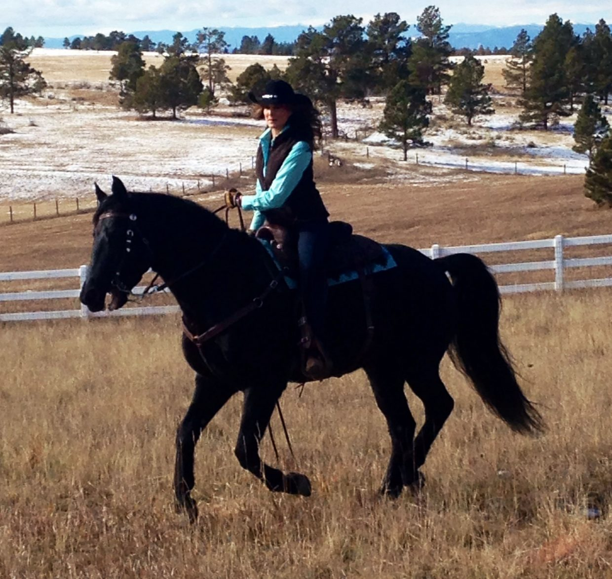 Kathy Sabine has three horses that she rides for pleasure. Her longtime love of horses and agriculture has served her well in Colorado, where so many viewers are involved in agricultural production.